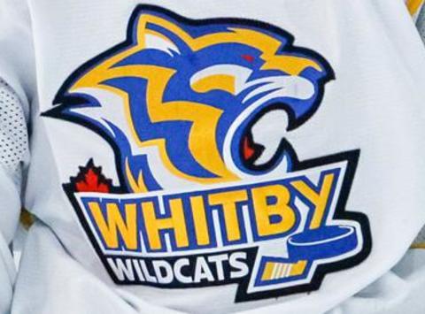 ice hockey fundraising -  Bantam A White  - Whitby Wildcats