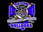1479379018bat cage bulldogs 2016