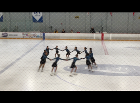 other sport fundraising - Fusion Synchronized Skating Team