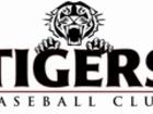 1479341046l tigers logo web 5866460