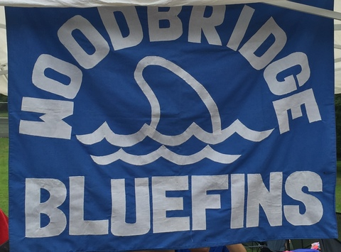 swimming fundraising - Woodbridge Valley Bluefins