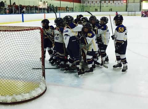 ice hockey fundraising - Whitby Wildcats Minor Atom AA