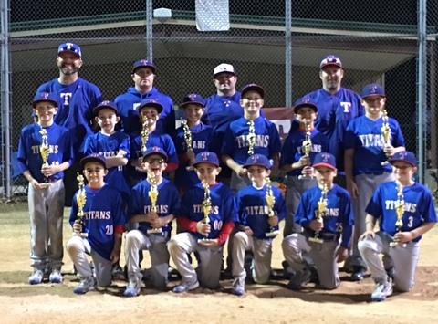 baseball fundraising - Piedmont Titans