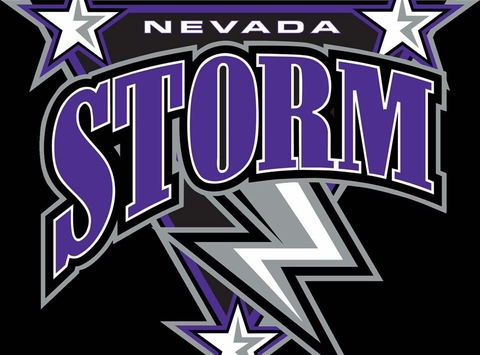 ice hockey fundraising - Nevada Storm Squirt A