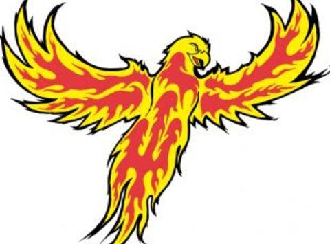 ice hockey fundraising - Duluth Phoenix Bantam Minor