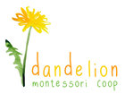 1479229875dandelion logo 01 compressed