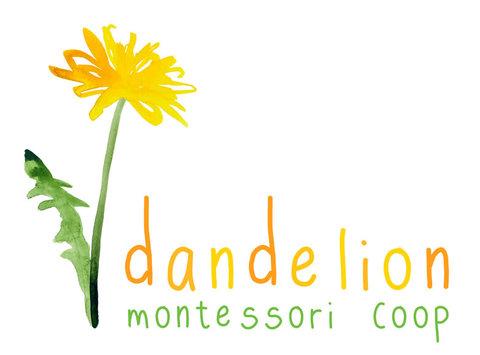 Dandelion Montessori Coop