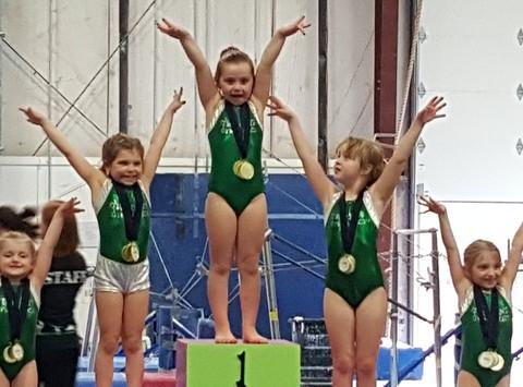 gymnastics fundraising - Jessica's aau gymnastics
