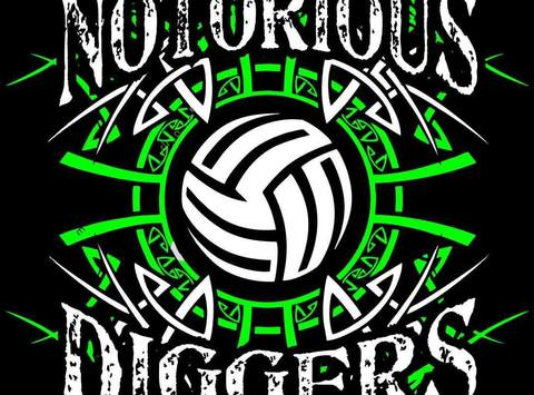 volleyball fundraising - Notorious Diggers Volleyball Club