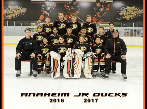 ice hockey fundraising - 2016/17 Anaheim Jr Ducks 10U - Squirt A