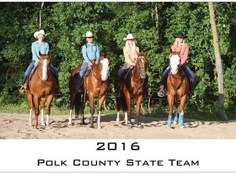 4-h fundraising - Polk County MN 4-H Horse Project