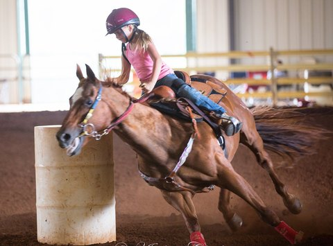 other sport fundraising - National Barrel Racing Association VA 06