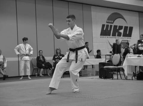 martial arts fundraising - Lutz Team USA