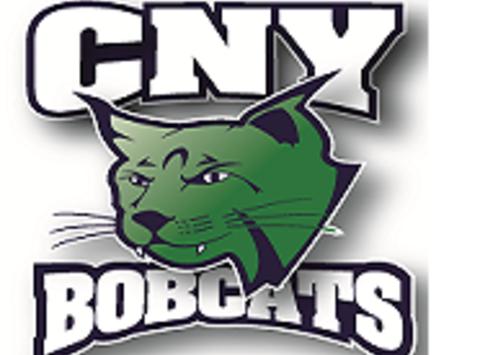 ice hockey fundraising - CNY Bobcats Girls Hockey 10u Team
