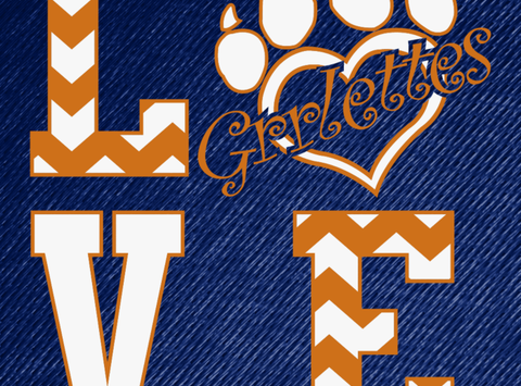 other group, team, or cause fundraising - Grrlettes Dance Team