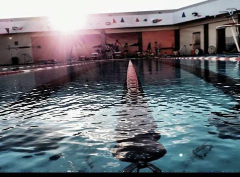 swimming fundraising - New Brighton Lions Aquatic Club