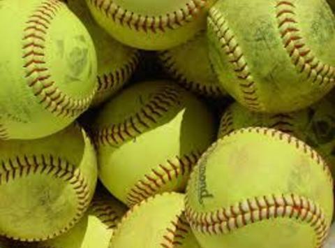 softball fundraising - Windsor High Softball Florida Trip