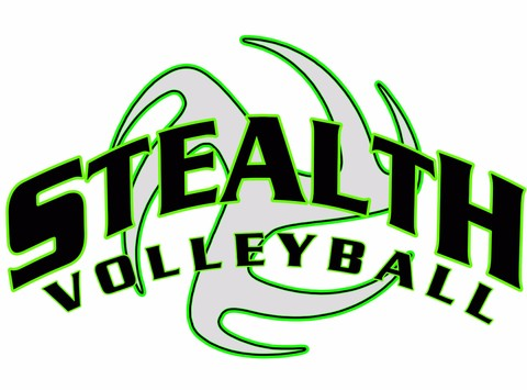 other organization or cause fundraising - Stealth Volleyball Club