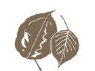 1480431827blue logo