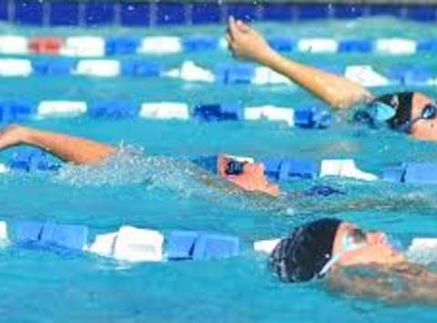 swimming fundraising - Ysabel Fine - Maccabiah Games 2017 Canadian Swim Team