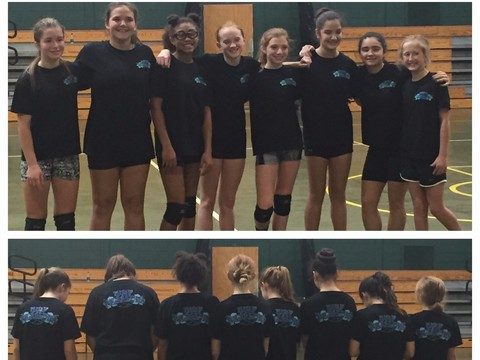 volleyball fundraising - Nwf Pilialoha girls vball (Lani2)