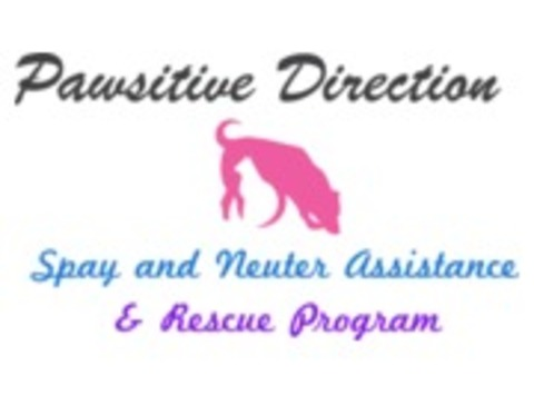 community improvement projects fundraising - Pawsitive Direction