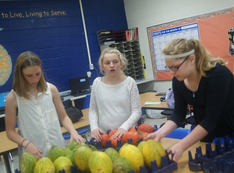 other group, team, or cause fundraising - Albany High School FFA